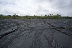 Cracked Lava Bed 9802 Stock Image
