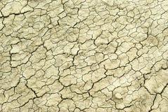 cracked lera Arkivbild