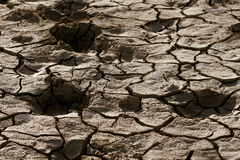 Cracked lifeless soil. Cracked by the heat long lifeless soil Royalty Free Stock Images