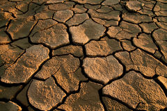 Cracked lifeless soil stock photo