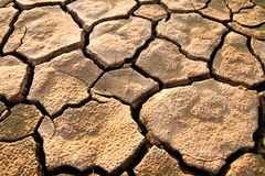 Cracked lifeless soil Stock Photography