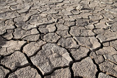Cracked lifeless soil Royalty Free Stock Images