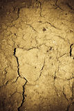 Cracked loam background Royalty Free Stock Photos