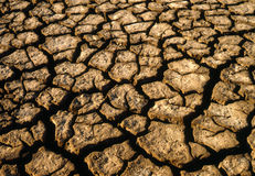 Parched marshland mud Royalty Free Stock Photos