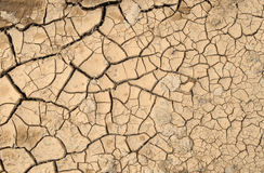 Cracked mud. Stock Photo
