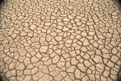 Cracked mud. On dry lake margins Royalty Free Stock Photo