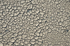 Cracked mud Royalty Free Stock Photo