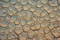 Cracked mud Stock Images
