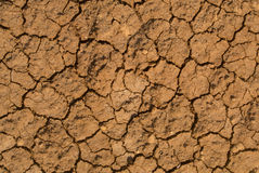 Cracked mud. An abstract Cracked mud texture Royalty Free Stock Photography