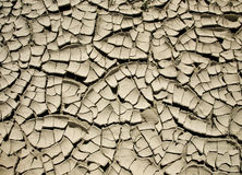 Cracked Mud Background/Texture Stock Photos