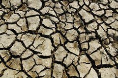 Drought. Cracked mud in the bottom of a river showing drought Stock Photo