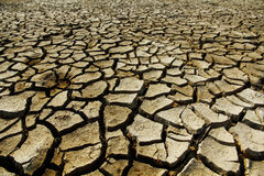 Drought. Cracked mud in the bottom of a river showing drought Stock Photography