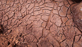 Cracked Mud Royalty Free Stock Photos
