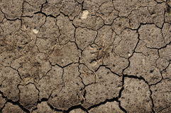 Cracked Mud or Dirt used as a Background Stock Images