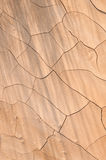 Cracked Mud Flats Stock Photos