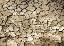 Cracked mud ground Stock Photo