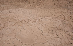 Cracked mud Royalty Free Stock Photography