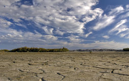 Cracked mud and saline flats of The Camargue Royalty Free Stock Image