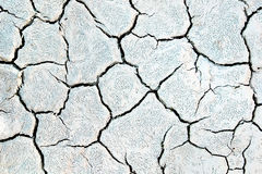 Cracked mud texture Stock Image