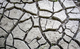 Cracked mud texture Stock Photo
