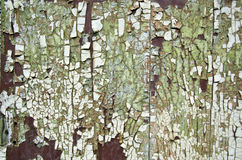 Cracked old paint background on wooden door Royalty Free Stock Image