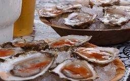 Cracked open oysters on ice bowls, ready to eat stock photos