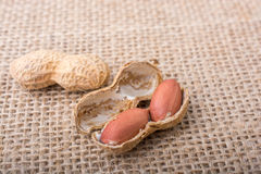 Cracked open peanuts with shell on a linen canvas Royalty Free Stock Image