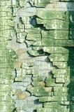 Cracked paint Stock Image