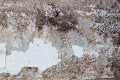 Cracked paint on an old wooden door Royalty Free Stock Photo