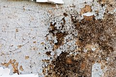 Cracked paint on an old wooden door Royalty Free Stock Image