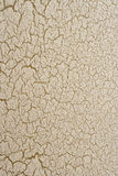 Cracked paint texture. A peeling / cracked painted wall background texture royalty free stock images
