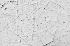 Cracked paint texture, black and white background Stock Images