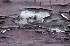 Cracked paint on wood Royalty Free Stock Photography