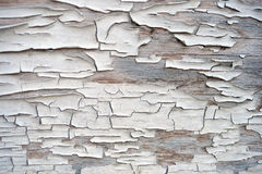 Cracked paint on wood texture Royalty Free Stock Photo
