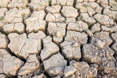 Cracked and parched dry soil Royalty Free Stock Photo