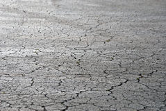 Cracked pavement Royalty Free Stock Photo