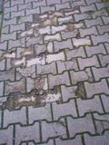 Cracked pavement Royalty Free Stock Images