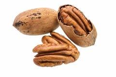 Cracked pecan nut isolated on white background,macro shot. Cracked pecan macro shot on white background Stock Photos