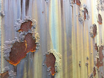 Cracked and peeled metal with rust texture Stock Image