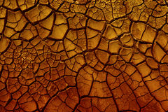 Cracked red clay. Royalty Free Stock Image