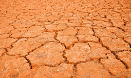 Cracked red land Royalty Free Stock Image