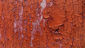 Cracked red paint background. Cracked red paint on a wooden wall background royalty free stock photography
