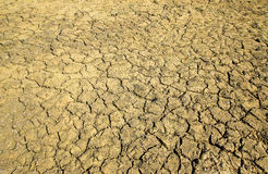 Cracked riverbed Stock Image