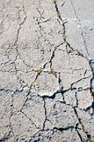 Cracked road flooring texture Royalty Free Stock Image