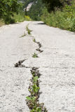 Cracked Road Royalty Free Stock Image