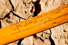 cracked sand in   africa  abstract macro bark Royalty Free Stock Photos
