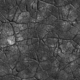 Cracked seamless texture Royalty Free Stock Photos
