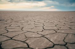 Cracked shore of the salt lake royalty free stock image