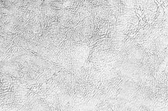 Cracked skin texture black and white Royalty Free Stock Images