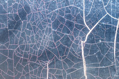 Cracked smooth surface Royalty Free Stock Image